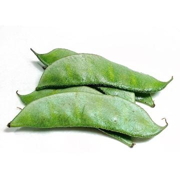 Picture of Fresh Broad Beans (India)