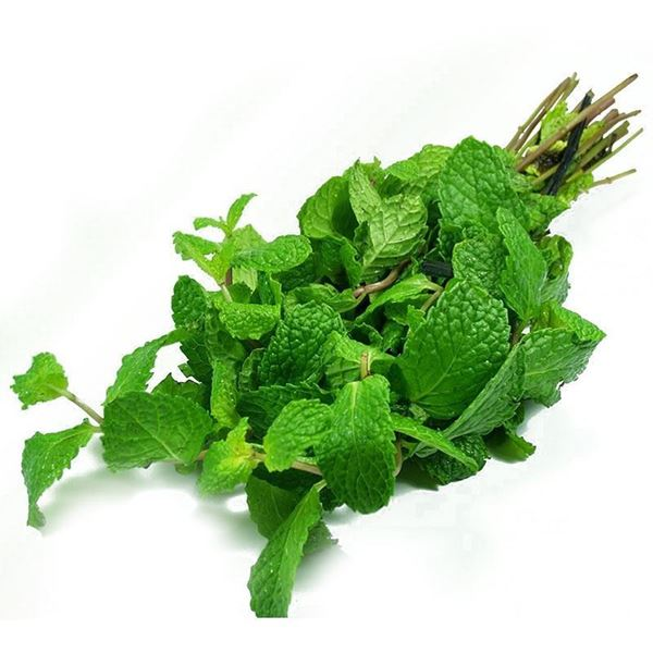 Picture of Fresh Mint Leaves (India)