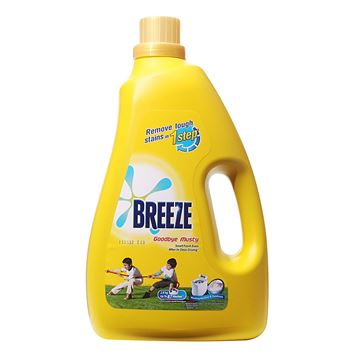 Picture of BREEZE  Goodbye Musty Indoor Drying Liquid Detergent