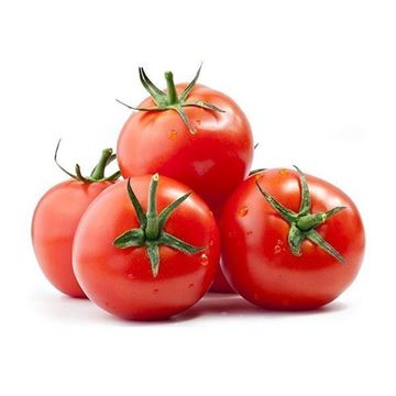 Picture of Fresh Tomato
