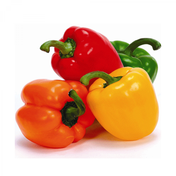 Picture of Fresh Capsicum Mixed Colors (Bell Peppers)