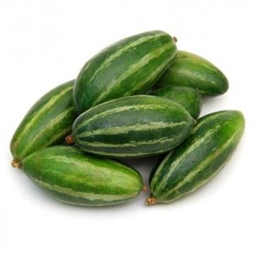 Picture of Fresh Pointed Gourd (Parwal)