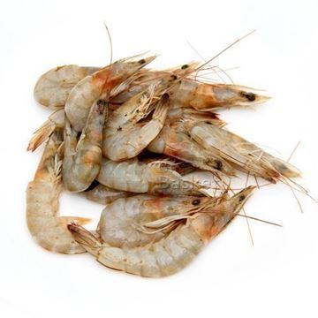 Picture of SURIA White Prawns (Peeled/Tail On) Chilled