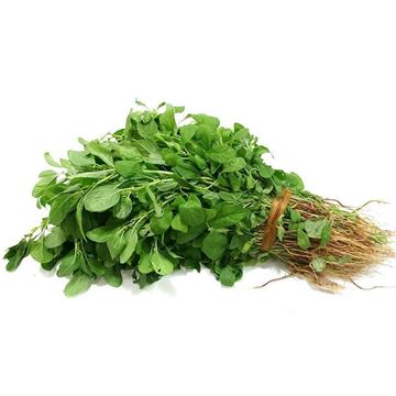 Picture of Amaranthus Spinach (Arai Keerai)