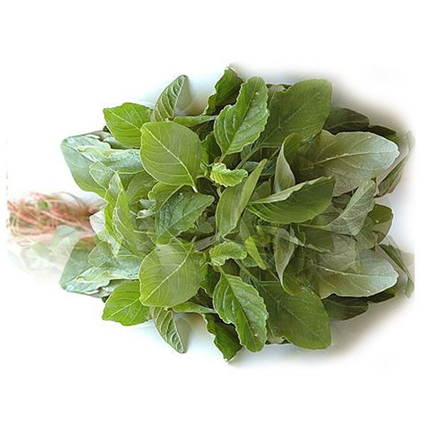 Picture of Fresh Green Spinach