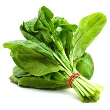 Picture of Fresh Palak Spinach (India)