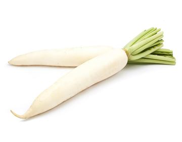 Picture of Indian Radish (Moolee)