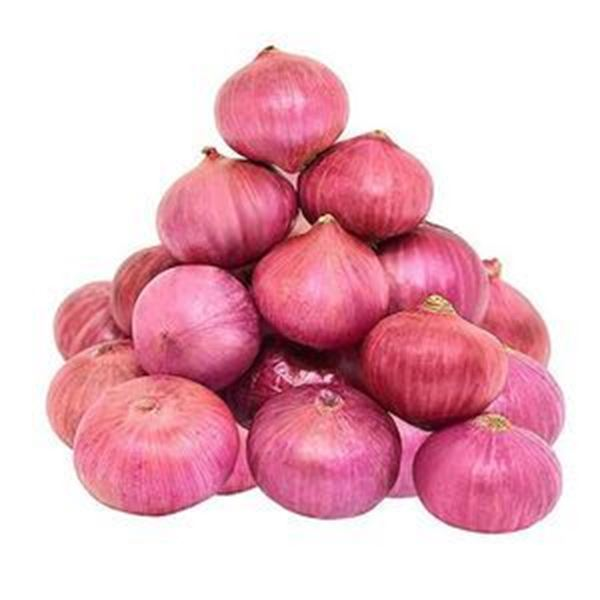 Picture of Fresh Big Onion (India)