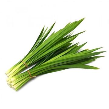 Picture of Fresh Pandan Leaves