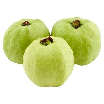 Picture of Fresh Guava (Thailand)