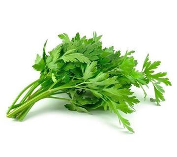 Picture of Fresh Celery