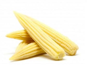 Picture of Fresh Baby Corns