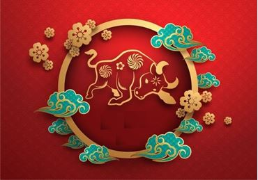 Picture for category CNY Products