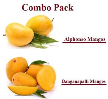 Picture of Combo ~ Fresh Banganapalli & Alphonso Mangoes India (No Exchange or Refund for this item)