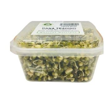 Picture of Dana Fresh Green Moong Sprouts (Deliver Atleast 2 days before it Expires)