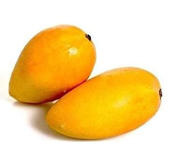 Picture of Fresh Neelam Mangos (Airflown from India)